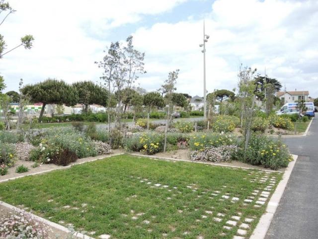 Open verharding parkeerplaatsen Treebeekplantsoen